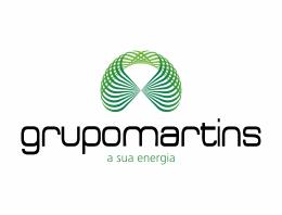 sbt14_grupoMartins_260x200x72